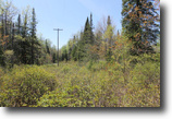 New York Hunting Land 113 Acres New York Hunting Land in the Adirondacks