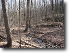 Tennessee Farm Land 37 Acres Beautiful Hardwoods & Rock Climbing