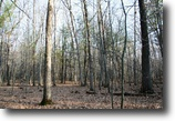 Wisconsin Land 2 Acres Great price on Woods, Water & Boat Slip