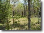 Michigan Hunting Land 200 Acres TBD Bowers Dr.,  MLS #1066338