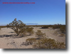 205 acres in Hudspeth County, Dell City