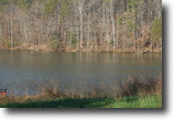 Virginia Waterfront 1 Acres Lake Anna Virginia Waterfront Lot 111