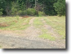 Virginia Hunting Land 4 Acres All Wooded With Spring!