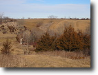 Iowa Farm Land 257 Acres 257 Ac Multi Purpose Wapello County Farm