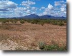 Arizona Farm Land 10 Acres Right in Winter Ropin' Country - Financing