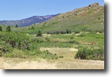 Bank Owned 5 Acre Alpine Property