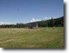 British Columbia Hunting Land 40 Acres Building land in the Rockies