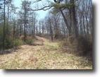 Ohio Hunting Land 83 Acres Shade Forest Retreat, Meigs County, OH