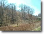 Kentucky Hunting Land 80 Acres Attn:Hunters 80+/- Isonville $89,900