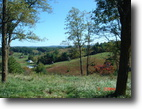 3.88 Private & Secluded Acres