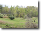 2+ Private and Secluded Acres