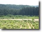 California Farm Land 46 Acres Hendy Woods View Farm