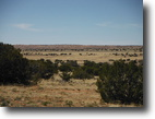 40 acre Ranch Land Northern Arizona