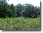 Kentucky Hunting Land 42 Acres SALE PENDING 42 +/- ac Elliott Co.KY