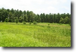 Georgia Hunting Land 99 Acres Gin Branch Farm