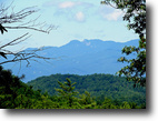 767 Acres in Caldwell County, NC