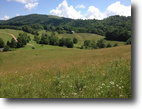 259 Acre Farm in Ashe County NC