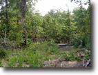 Missouri Ranch Land 250 Acres 250 ac. Inside Nat. Forest W. Plains, Mo.