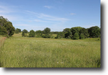 Missouri Farm Land 5 Acres Valley View Ranch Missouri Terms
