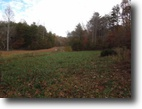45 Acres on James Pruitt Rd in Ky