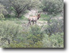 2846 acre Hunting Ranch