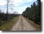 688 Acres of Hunting Land in Noxubee Co.