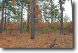 Oklahoma Ranch Land 14 Acres Indian Ridge Oklahoma Land Terms