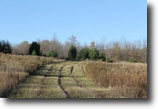 New York Hunting Land 14 Acres Owner Financing Land near NY State Forest