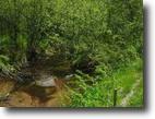 Michigan Hunting Land 800 Acres Tbd Menge Creek Rd  MLS #1012646