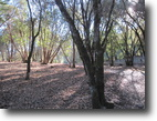 California Land 3 Acres Valley View Parcel waiting for your home.