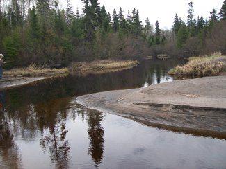 Trout Creek