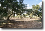 Florida Farm Land 62 Acres Rocky Ford Tree Farm