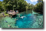 Florida Land 401 Acres Blue Springs Park