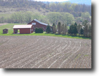 299 Tillable Acres with House and Barns