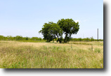 Texas Farm Land 1 Acres Meadowview Estates Texas Mobile Home Lot