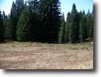 California Hunting Land 170 Acres Cat's Ear Ranch