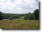 50 Acres In Edmonson County