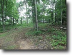 West Virginia Farm Land 56 Acres 01 Fairview Ridge  MLS 102605