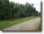 West Virginia Farm Land 50 Acres 02 Fairview Ridge   MLS  102606