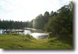 50 Acres Long Leaf  Pine Trees+8 acre pond