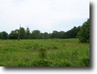 20 Acre Tract In Metcalfe County