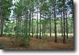 Alabama Land 2 Acres Build Your Dream Home!!