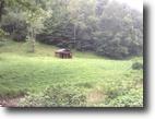West Virginia Hunting Land 25 Acres 1 Lemuels Road  MLS 102640