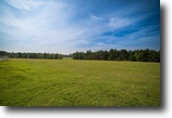 Real Estate Auction - 98.63± Acres