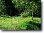 5.80 acres on Dororthy Peeler Rd.