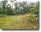 13.54 acres on Spence Lane Tract 10