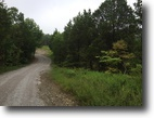 40 Acre Wooded Tract