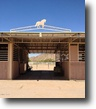 Arizona Farm Land 3 Acres SOLD-We Got More- Call Steve