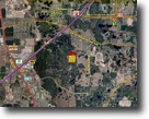 Florida Land 40 Acres Pine Tree Trail Residential Development La