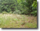 1.10 Acre on Hickory Nut Trail